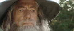 A look the bagginses in the hobbit